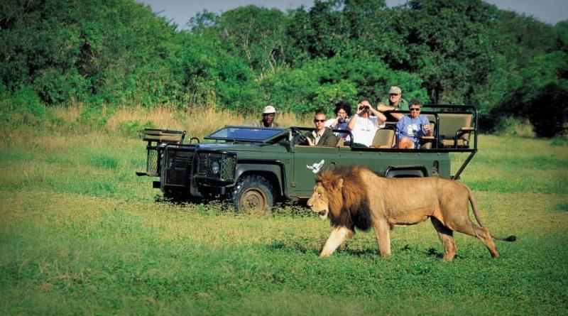 10 razones para viajar a Sudáfrica