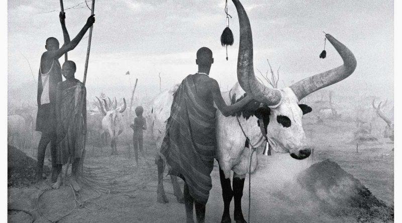 El cruce de las tragedias africanas de Sebastiao Salgado