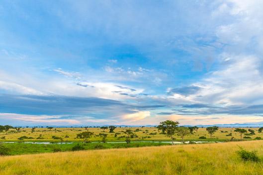 Itinerario y presupuesto para un safari en Uganda