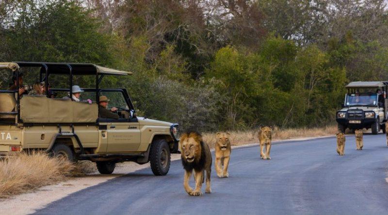 Las 10 mejores atracciones increíbles de Sudáfrica
