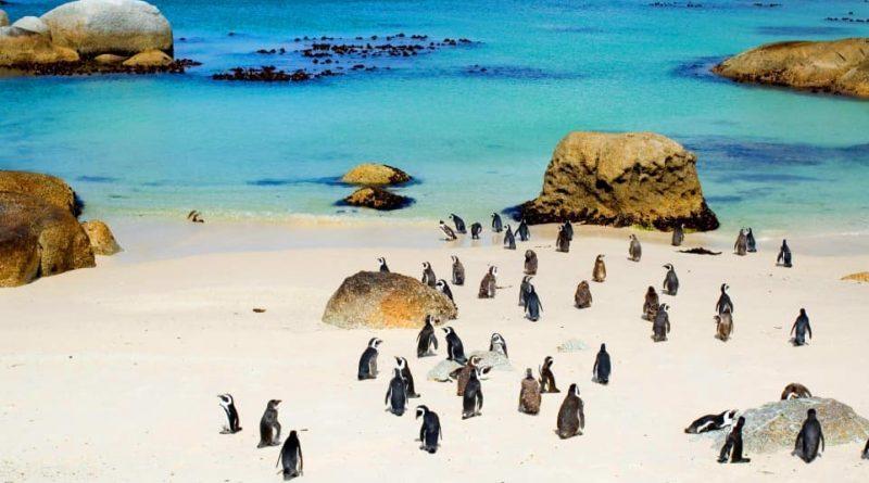 Las 10 mejores playas del Cabo Occidental