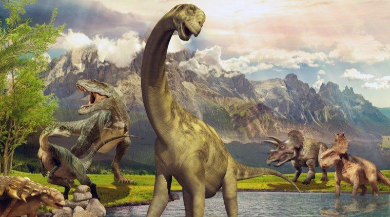 Los 10 animales más grandes que jamás hayan caminado sobre la tierra