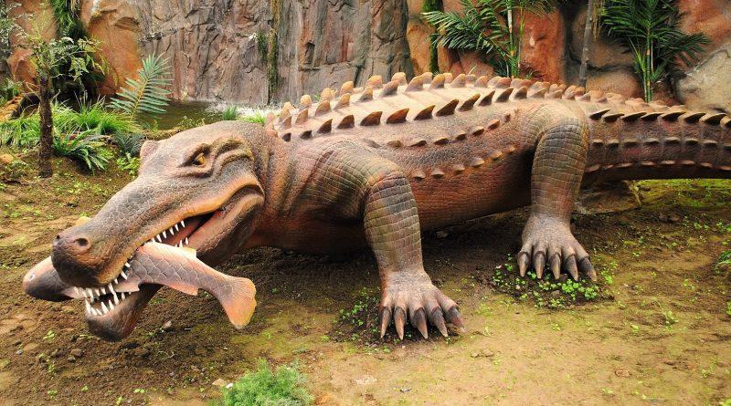 Largest Crocodiles Ever: Purussaurus mirandai