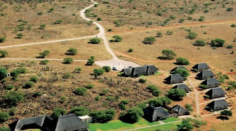 Parque Nacional Mokala: donde el Kalahari abraza al Karoo