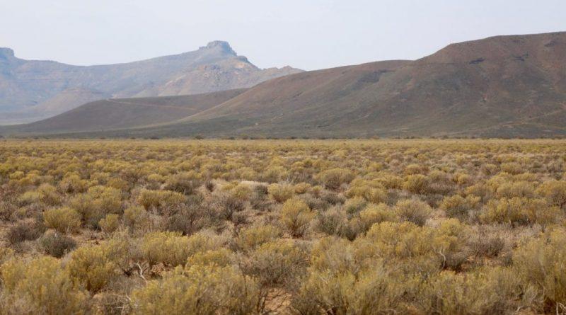 Parque Nacional Tankwa Karoo: dulce silencio y soledad