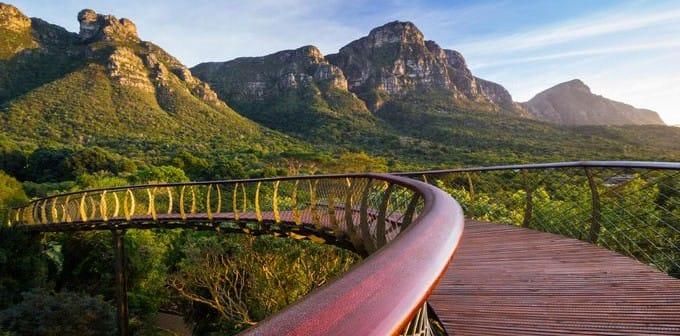 Pasarela del dosel, Jardín Botánico Nacional de Kirstenbosch