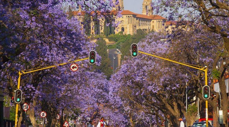 Pretoria: descripción general |  Descubrimiento de Sudáfrica
