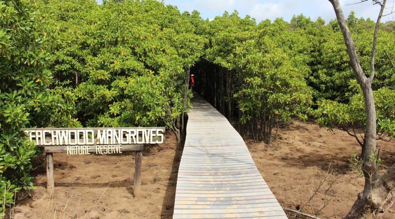 Reserva Natural Beachwood Mangroves - solo en Sudáfrica