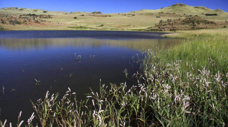 Reserva natural Suikerbosrand - ecoturismo en todo su esplendor