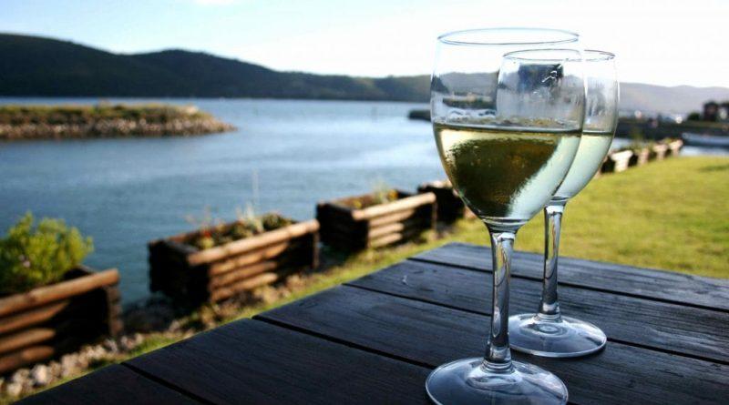 Top 20 vinos sudafricanos en el escenario mundial (parte 1)